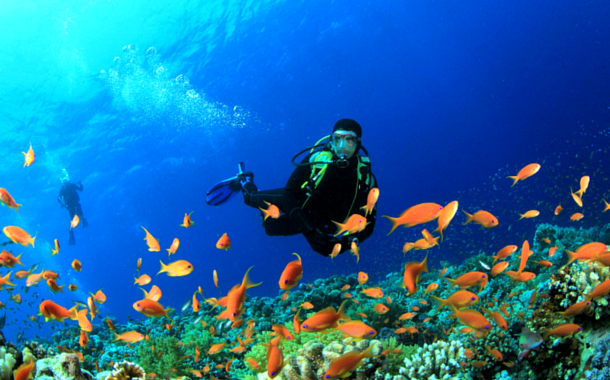 Scuba diving at Andaman Islands
