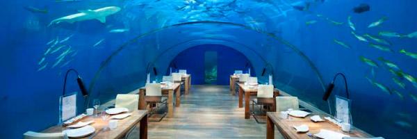 Under sea restaurant Iitha