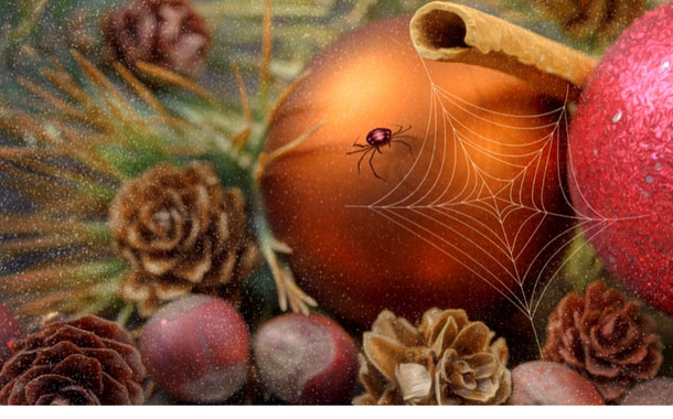 Christmas celebrations in Ukraine