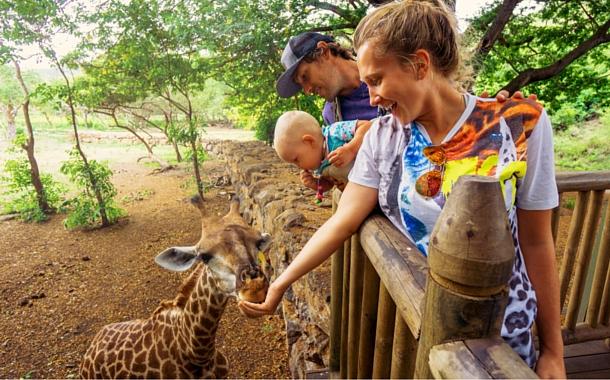 Jungle safari, Mauritius