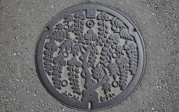 Manhole cover in Fujimi-shi, Osui, Japan