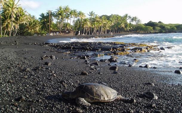 Panalu'u Beach located in Hawaii