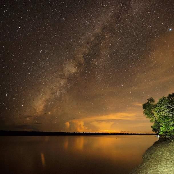 starry night, Sundarbans