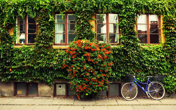 Top 5 Eco Friendly cities of the world
