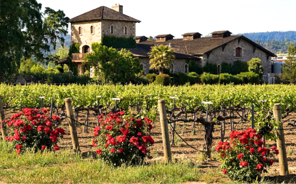 8 Places Every Wine Lover Needs To Visit