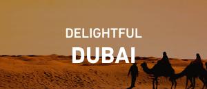 Delightful Dubai