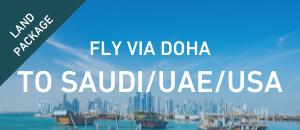 Fly to Saudi / UAE / USA via...