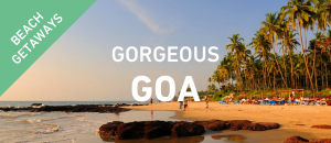 Gorgeous Goa
