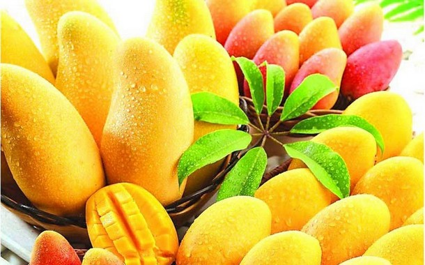 Mangoes Summertime